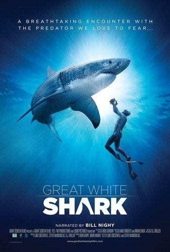Great White Shark 4K DOCU 2013 Ultra HD 2160p